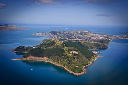 Miramar et la péninsule de Wellington sur l'île du Nord de la Nouvelle-Zélande.